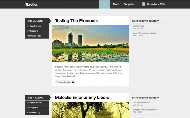 Skeptical - A fresh blogging theme by WooThemes. Demo | Homepage